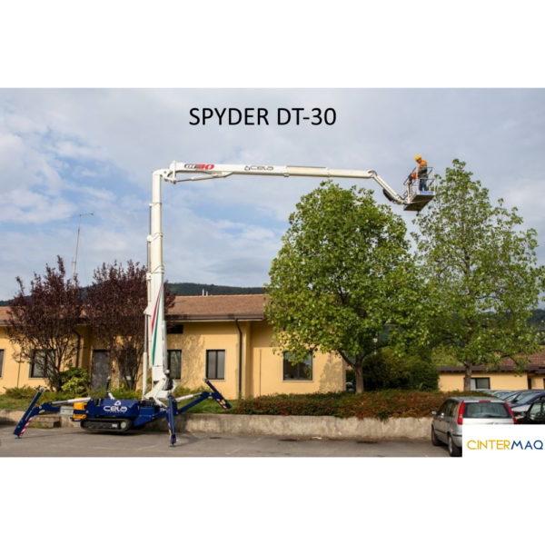 DT 30 4 4 1