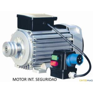 Motor Electrico Interruptor Seguridad 1 ok